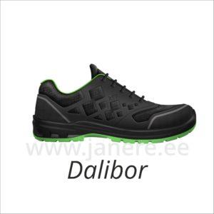 Turvajalanõu Dalibor 42